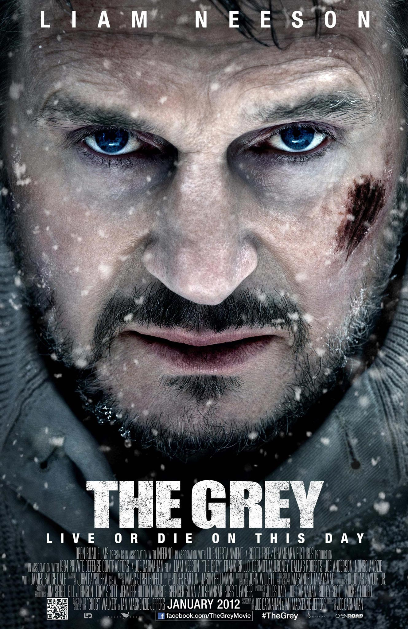 Movie Review: The Grey (2012)