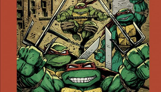Review: TMNT – The Kevin Eastman Covers