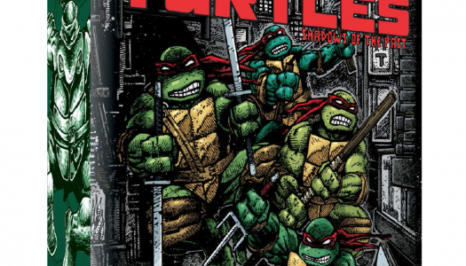 "IDW Games Set to ""Turtle Power"" Kickstarter in Single Day"