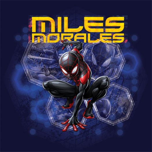 Miles Morales 2017 Spider-Man Cartoon