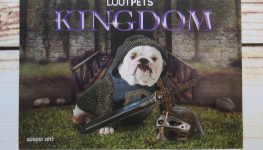 LOOT PETS AUGUST 2017: KINGDOM (REVIEW, SPOILERS)